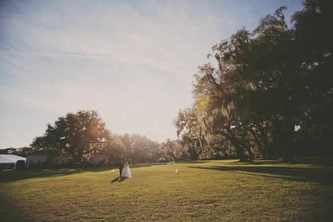 The Wedding Row_0201.jpg
