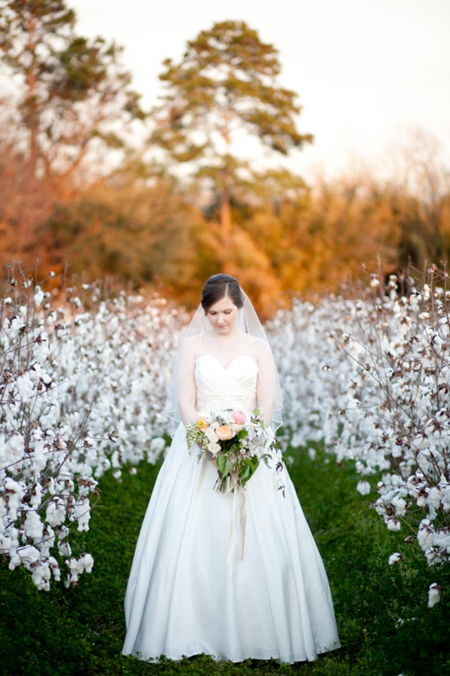 Post image for Kaitlin {Boone Hall Plantation}
