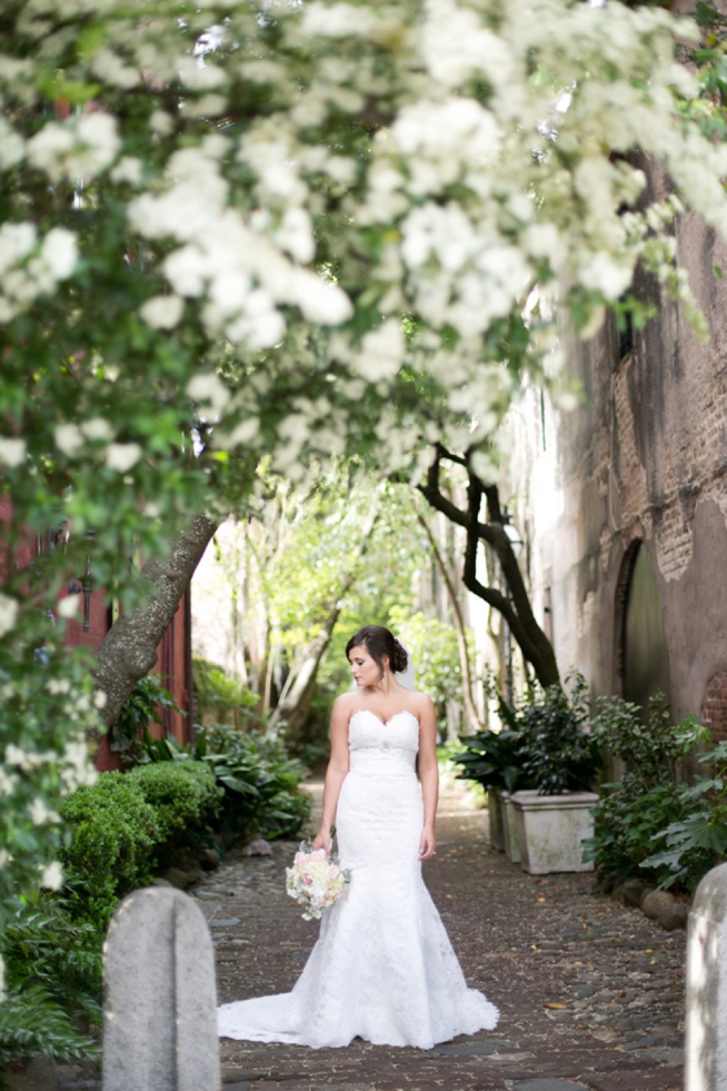 Post image for Whitney {Bridal Portrait}